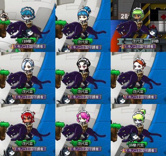 夜代紫28