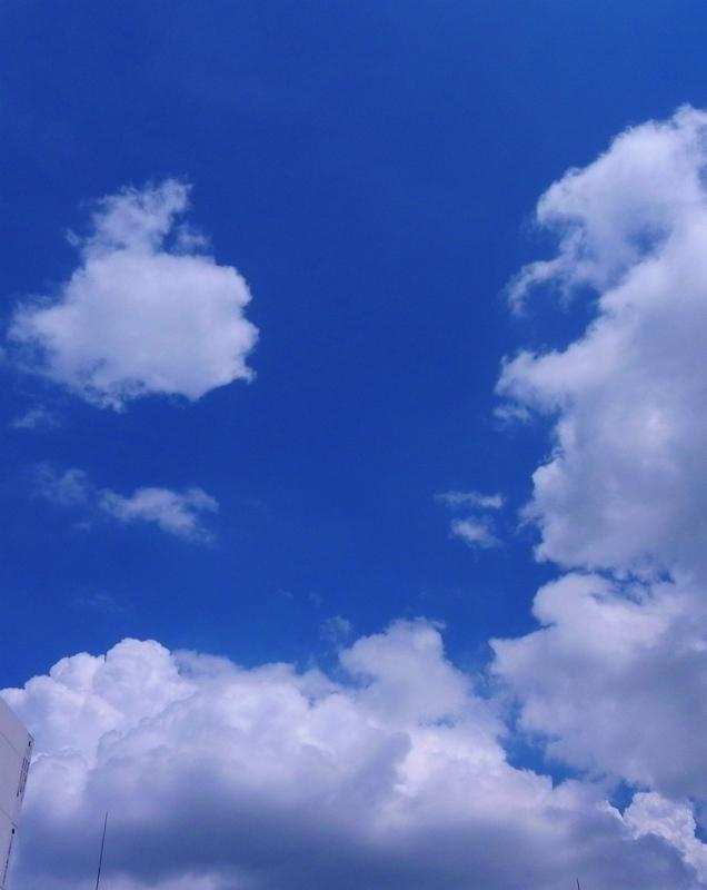 sky0001.jpg