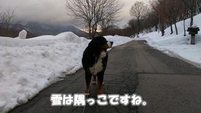 IMAG0469.jpg