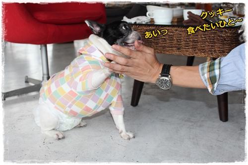 IMG_6863秋