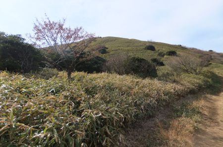 玄岳山頂付近