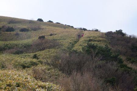 笹原を下る