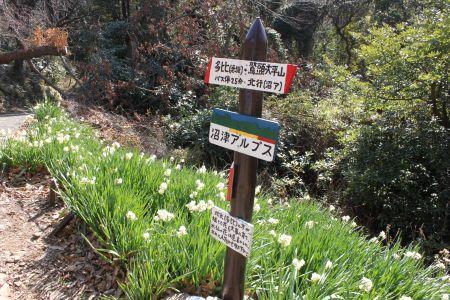 大平山への登り