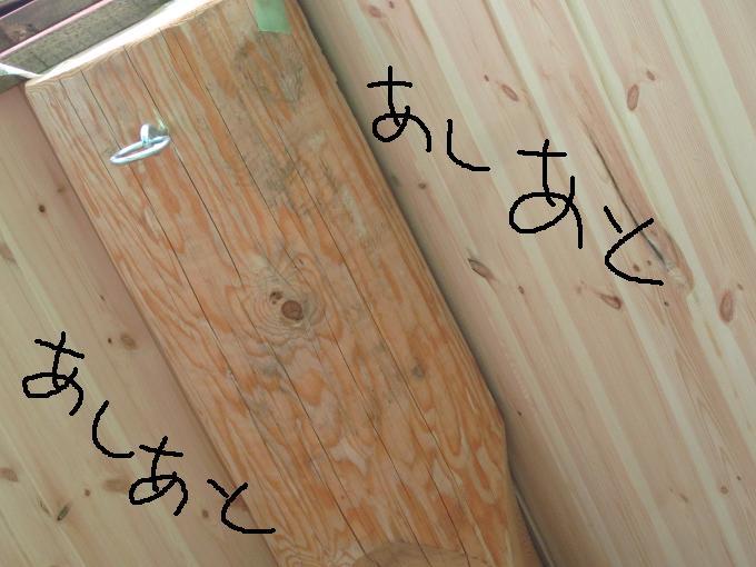2011122505.jpg