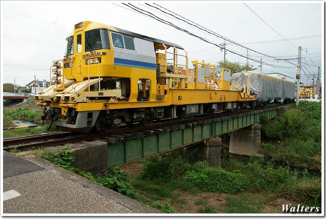 DSC01161.jpg