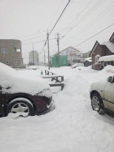 雪の国だわぁ。
