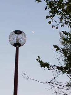 鳥かごみたいな電灯だ。