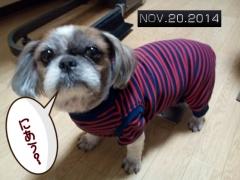 2014-11-20-20-12-46_deco.jpg