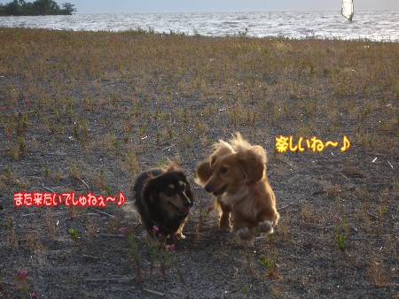 14_20100625143656.jpg