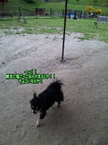 j_20100602130459.jpg