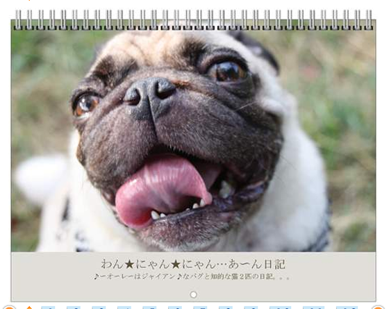 スクリーンショット(2010-11-01 12.19.59)