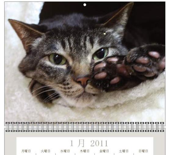 スクリーンショット(2010-11-01 12.33.01)