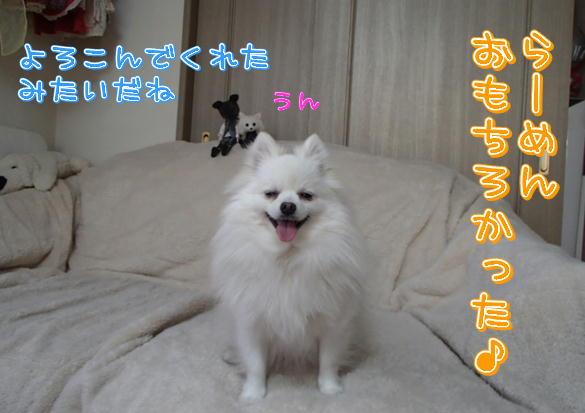 24_20131218075747789.jpg