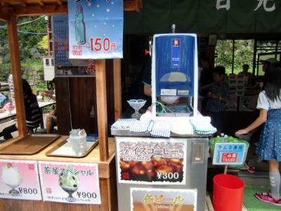 Nikko Trip 8