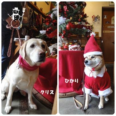 2013-12-122.jpg