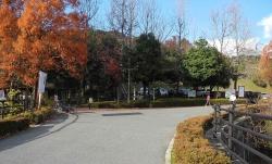 鏡山公園でアコーディオン20141129ー1
