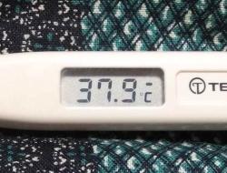 熱が出た20141120-1