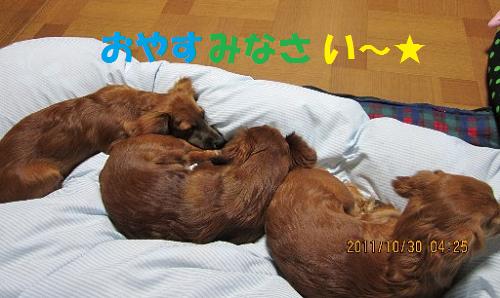 おやすみ無題