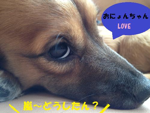 LOVE無題