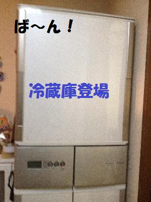 冷蔵庫無題