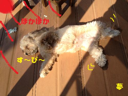 5す~ぴ~無題