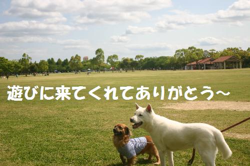 あり=無題