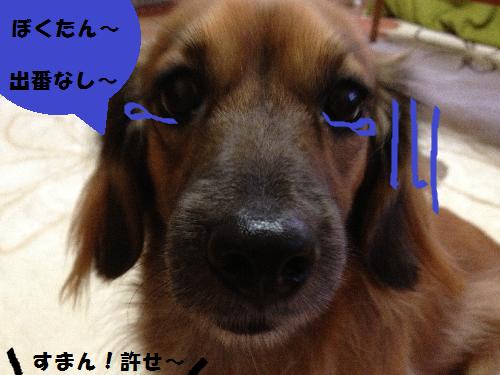 すまん!無題