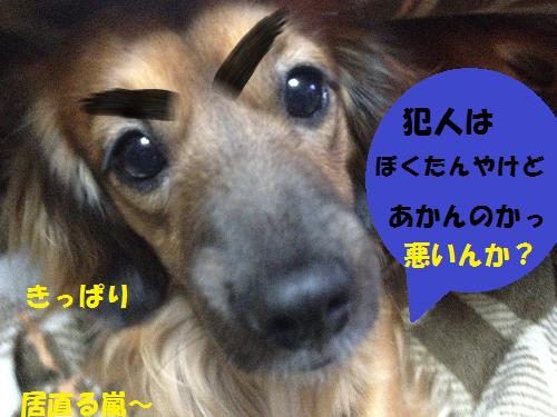 inaori1.png