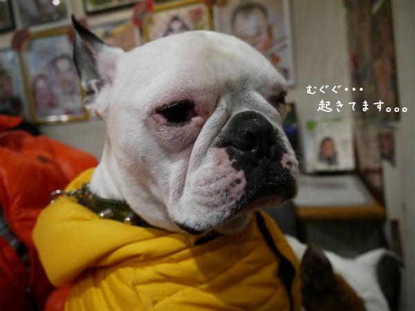 BBQ&浅草18