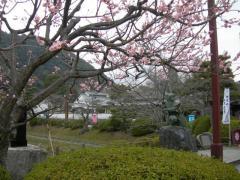 iwakuni201136-1.jpg