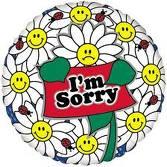 IM SORRY2