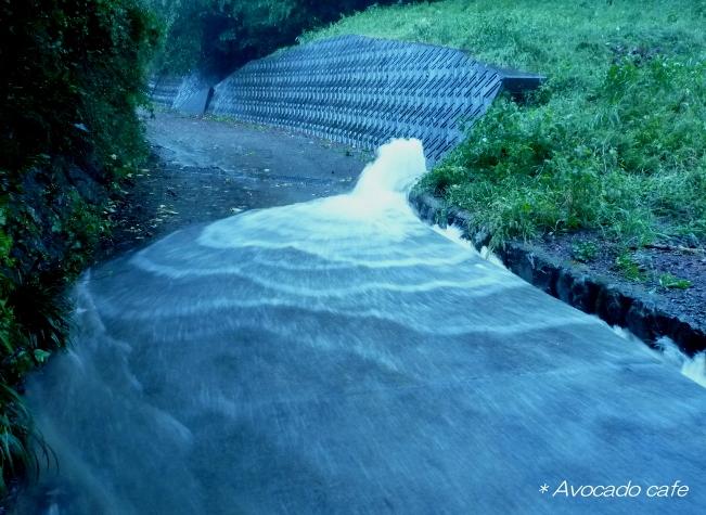 側溝から雨水