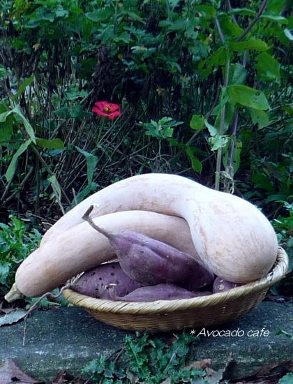 バナナカボチャとサツマイモ