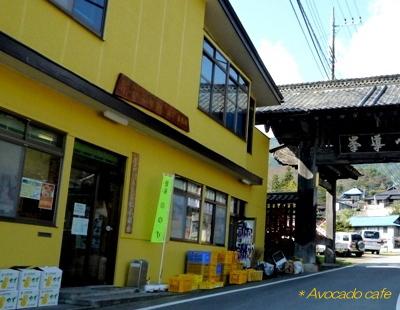 柚子色建物