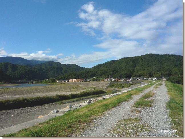 富士川土手・来た道