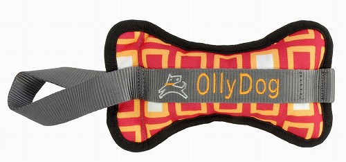olly-bone-orange-squares_1024x1024.jpg