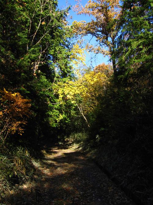 mountain-path_13_11_30_1