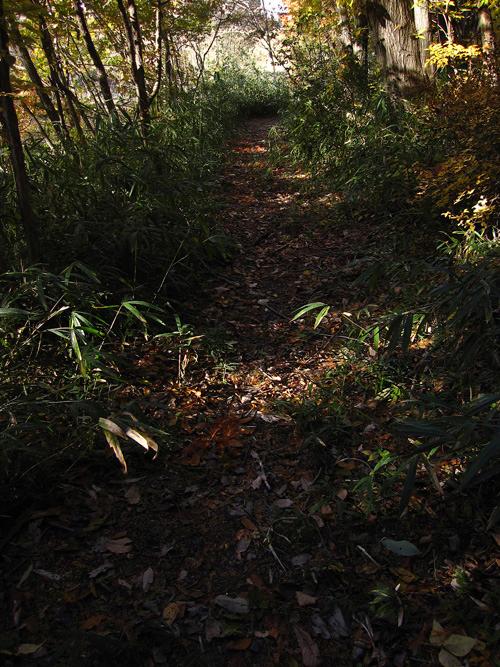 mountain-path_13_11_30_3.jpg