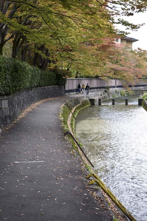 shirakawa_14_11_5_1.jpg