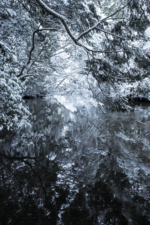 snow_14_10_1.jpg