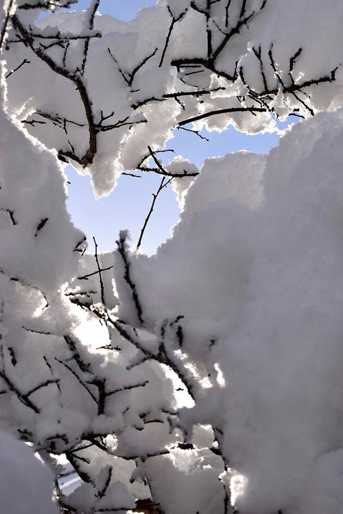 snow_14_10_11.jpg
