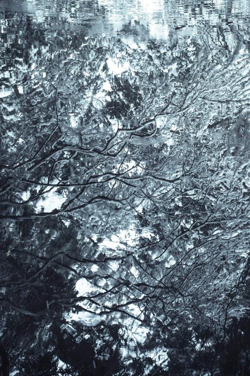 snow_14_10_3.jpg