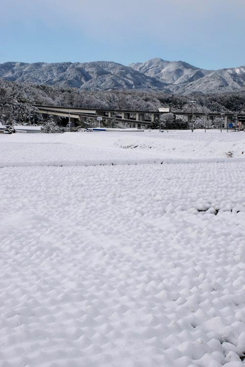 snow_14_10_5.jpg