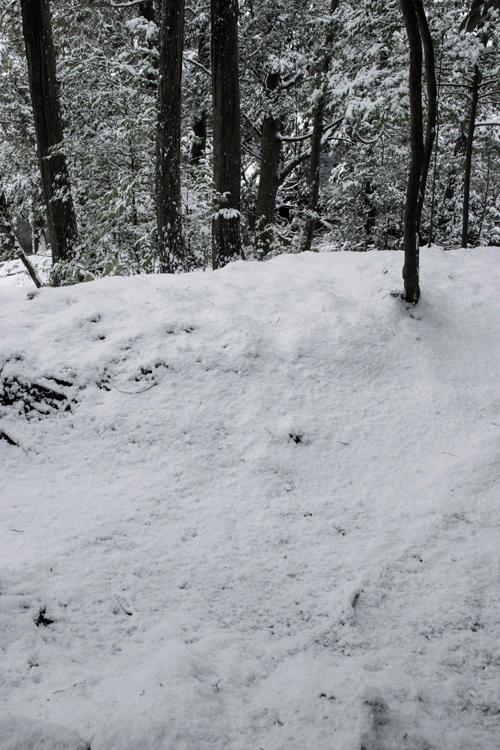 snow_14_10_9.jpg