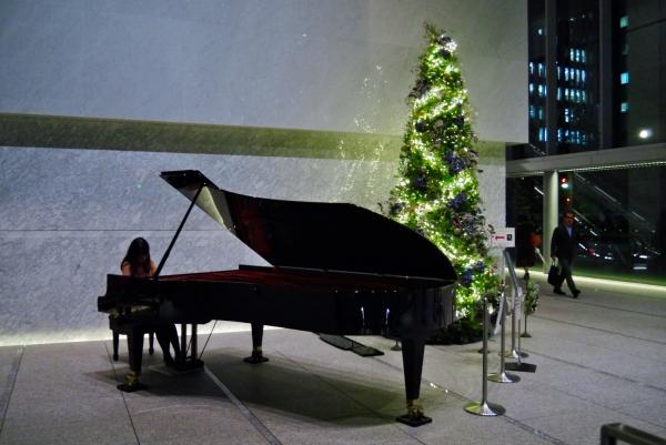 2013年霞ヶ関イイノホールのクリスマスツリー / X'mas tree 2013 Iinohall Kasumigaseki