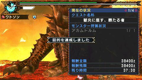screen34_20110108133704.jpg