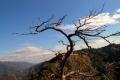 秋の笠置山にて