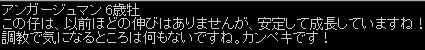 2012y12m19d_224811680.jpg