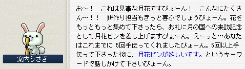 05ハッハーン! ヾ(`Д´)ゝ ワカッタぴょーん