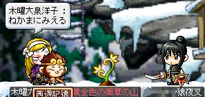 110830_05いぬkの猿DB